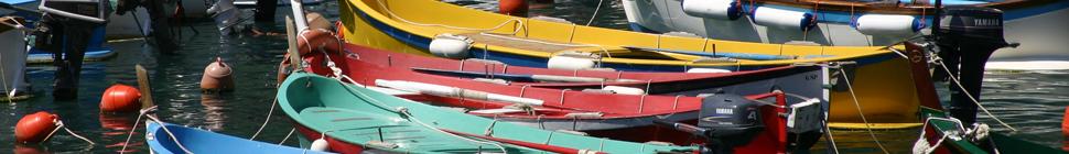 Vernazza Fishing Fleet
